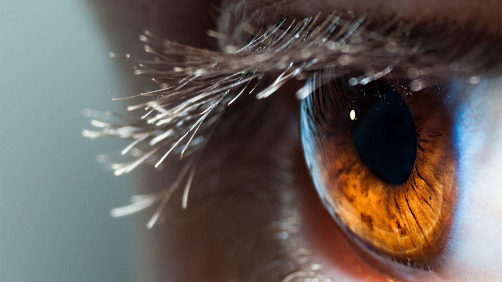 Mata, sumber Science