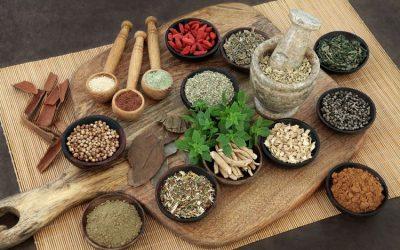 Yuk Ketahui : Pengobatan Asam Lambung Secara Herbal