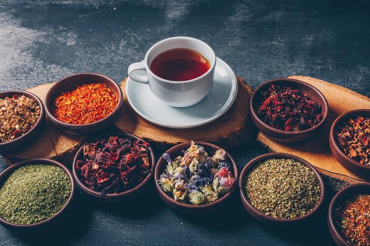 Ilustrasi obat herbal kolesterol, Sumber : reddoorz.com